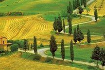 Bajo El Sol De La Toscana por 49€ / El hotel que os ofrecemose encuentra en Poggibonsi, en una pequeña y encantadora ciudad rodeada por una colina cubierta de verde, a sólo cinco minutos andando del casco antiguo en el corazón de Val D'Elsa: uno de los lugares clásicos y de ensueño de la Toscana y, al mismo tiempo, en una zona ideal para ir a las ciudades más bonitas del arte de los alrededores. Os recomendamos visitar en Poggibonsi el Santuario di Romituzzo, el Palazzo Pretorio, las Fonte delle Fate y la Basilica di San Lucchese. / by Busco Un Chollo
