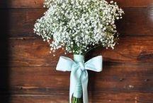 Bridal Shower and Bridesmaids / by Leslie Vanderpool