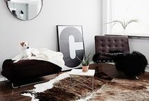 Home material / by Cristiana Odu