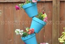Container Gardening / by Ann Metz
