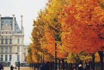 Tis Autumn / by Jolie Goodnight