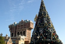 Christmas trees from around the theme park world / Photos from over the years of Christmas trees displayed at some of the world's top theme parks. / by Theme Park Insider