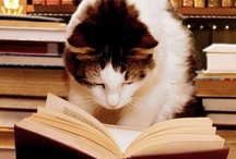 Books I Have Read  / Reading is the most entertaining, educational, facinating, and enlightening activity/hobby a person can participate in alone or with others in a book club or just sharing a love of books with their children, other family members or friends.  / by Barbara Taylor