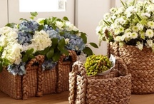 Baskets / by Michele Yates {The Homesteading Cottage}