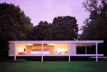 mid century / by Connecticut Cookie Company®