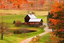 beautiful barns / by Melissa Noonan