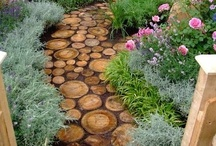 Outdoor design / by Erica Albright