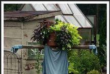 Scarecrows / by Kim Love-Ottobre