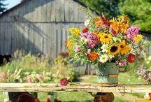 Wild and rustic flowers / Luční kvítí / by Almara Shop