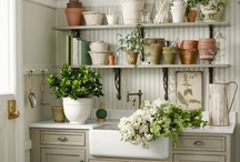 Potting Shed / by Terry Beaudry