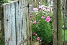 Garden Inspiration / by Sabrina Spencer