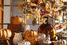 Fall Decorations / by Paula Jurrens