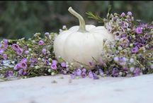Neutral Autumn / Whites and off whites give a new twist to a softening elegance to this end of year season.  Days are shorter and nights become longer, indian summer may linger and then the brisk sweep of cold envelops our surroundings. / by `✿.Evelyn•*¨*•.¸¸♥ Miller