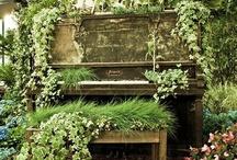 Garden / by Jen Brookman