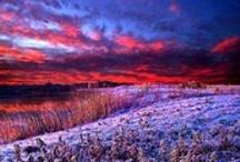 Sunrise/ Sunset / by Teresa Powell
