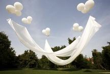 Ceremonies and Parties / by Heidi Doose