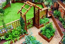 Garden Gratification / See beautiful backyards, gardens, and landscaping ideas all right here on our Garden Gratification board. Plus, learn wonderful tips for gardening and keeping plants thriving! / by House Plans and More