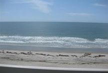 The Beach / by Monty Cheek