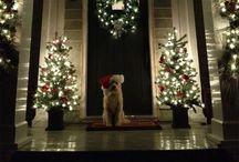 Christmas / by Elizabeth Debosier