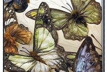 Textile arts and inspiration / by Lynnette Grant