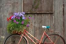 Gardening-Planters on wheels / by Deb Bahr