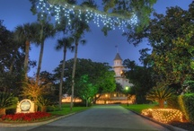 Holiday's at the Jekyll Island Club Hotel / The Holiday's are a great time of year to spend at the Jekyll Island Club Hotel. We have great packages for both Christmas (http://www.jekyllclub.com/packages/christmas-package/) and New Year's (http://www.jekyllclub.com/packages/new-years-eve/) that are perfect for celebrating the Holiday's. There are tons of events that will put you in the holiday spirit. Each picture is linked to our holiday flyer. Enjoy and happy re-pinning!  / by Jekyll Island Club Hotel