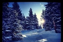 We love snow! / by Arctivity.com