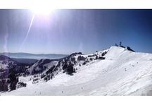 Alpine Meadows Ski Resort | California | USA | Arctivity Discover Your Next Adventure / Lake Tahoe Alpine Meadows is a serene, beautiful resort comprised of 2,400 skiable acres, over 100 trails, a terrain park and plenty of cozy cafés and bars serving winter comfort food. If you are looking for a laid-back, family-friendly atmosphere without the hustle and bustle of busier resorts, Alpine Meadows is the perfect place to get away and enjoy nature. / by Arctivity.com
