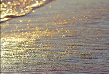 Sparkle & Shine / by Brandi Montagnino