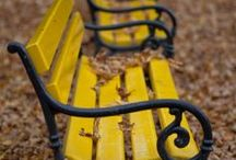 Have a seat / Benches & Chairs / by Stephanie Torsell ღ