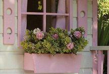 Window boxes  / by Deborah Lynn Ayers Ballard