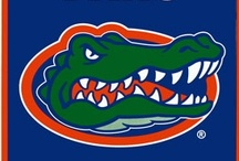 Go Gators! / University of Florida / by My Southern Style