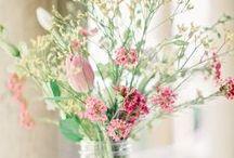 Pink & Green / by Katrina Nockolds (Precious Gorgeous)