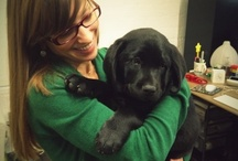 Dogs / We love puppies here at TaskRabbit HQ, follow this board for photos of the pups around the office.  / by TaskRabbit