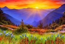 Colors Of Nature / by Soledad Vilchez #1