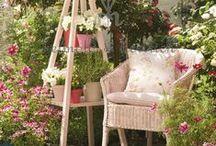 Gardening and Backyard Fun Things / by Cathy Kent