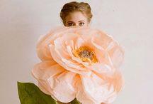 Floral Fragrant / by Jacqueline Chen