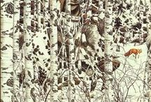 Art*Illusions / I especially love Bev Doolittle's paintings.  Nothing is exactly what it seems.  Look closely or you will miss it..... / by Cathy Kent