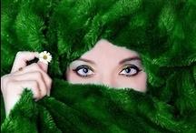 GREEN / Green / by Sonoe Kinoshita