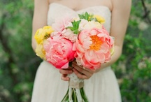 Wonderful Weddings / by Caitlin Courtney