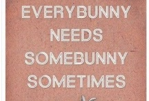 I Love Rabbits / by Sandy Lumsden