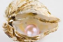A Pearl Wardrobe / by Sue Giannotta