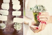 Wedding - Decorations / by Emma Robinson