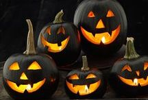 Halloween / by Amy Pasek