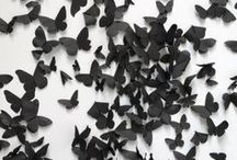 Bugs and butterflies / by Camilla Stacey