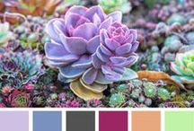 Colour swatches / by Brit Wellens