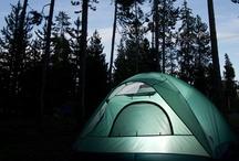 Camping / by Tina Butler