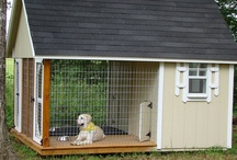 Dream House: Pet Spaces / by Ashley Bryant