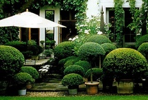 OUTDOOR SPACES / by Joanne Dallas