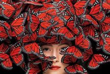 Millinery / by Michelle Gibson